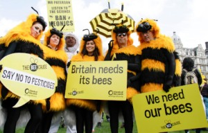 march_of_bee_keepers_2_425